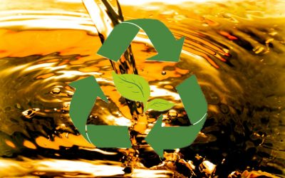 Belleville IL Recycling Solutions For Restaurants